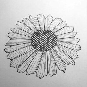 Rita blomma