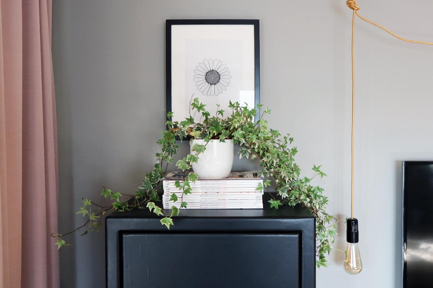 Rita din egen blomtavla – steg för steg